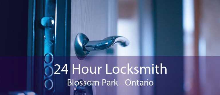 24 Hour Locksmith Blossom Park - Ontario