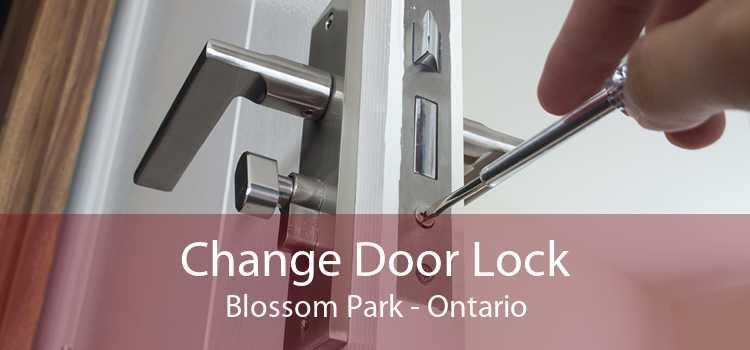 Change Door Lock Blossom Park - Ontario