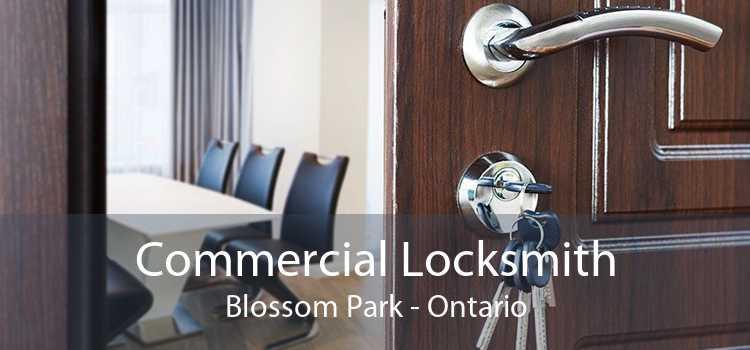 Commercial Locksmith Blossom Park - Ontario