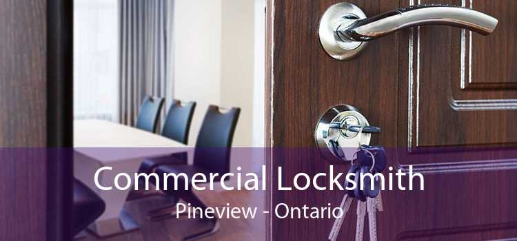 Commercial Locksmith Pineview - Ontario
