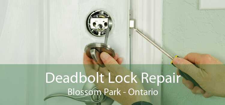 Deadbolt Lock Repair Blossom Park - Ontario