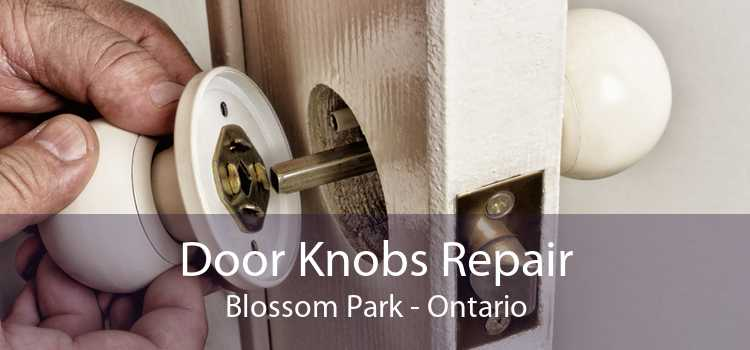 Door Knobs Repair Blossom Park - Ontario