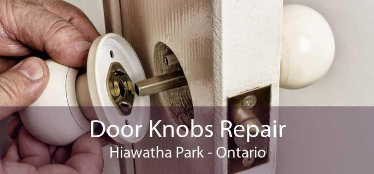 Door Knobs Repair Hiawatha Park - Ontario