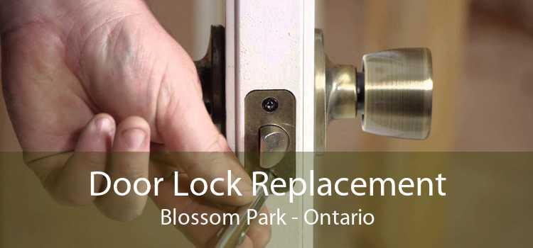 Door Lock Replacement Blossom Park - Ontario