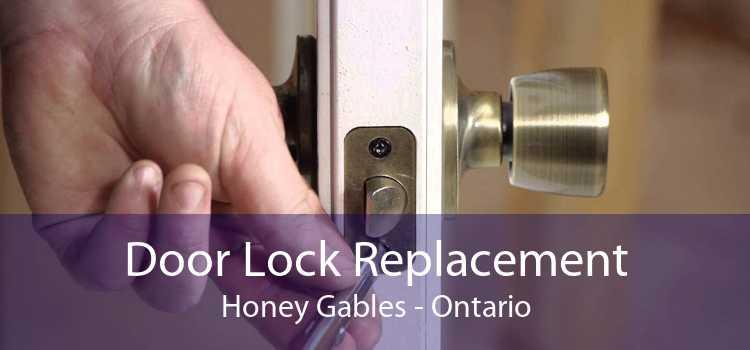 Door Lock Replacement Honey Gables - Ontario