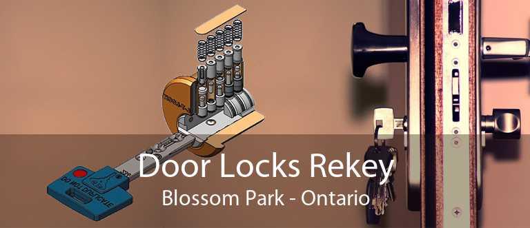 Door Locks Rekey Blossom Park - Ontario