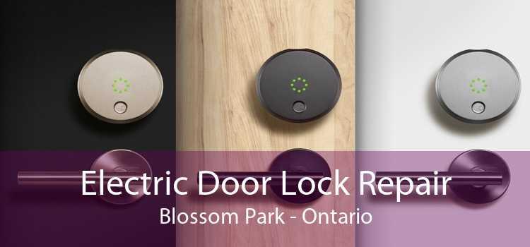 Electric Door Lock Repair Blossom Park - Ontario
