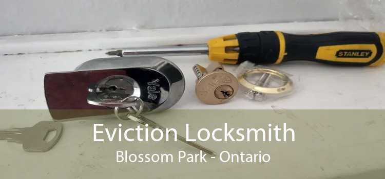 Eviction Locksmith Blossom Park - Ontario