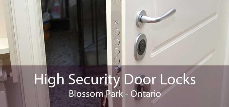 High Security Door Locks Blossom Park - Ontario