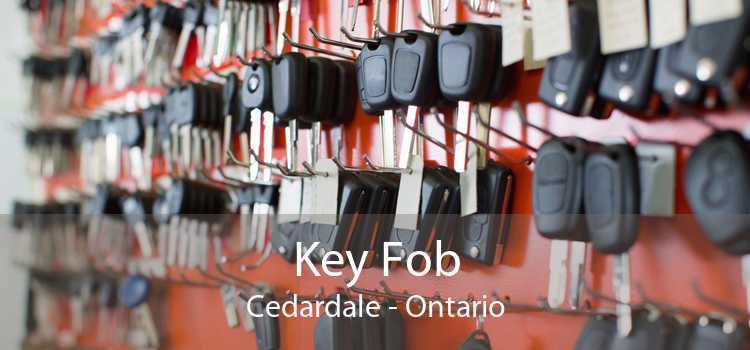 Key Fob Cedardale - Ontario