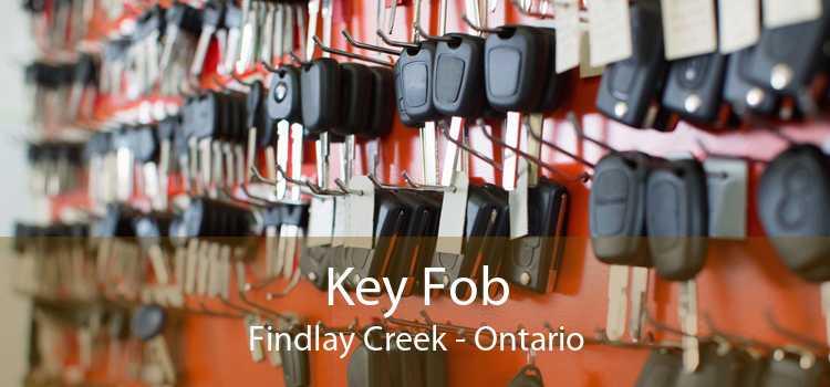 Key Fob Findlay Creek - Ontario