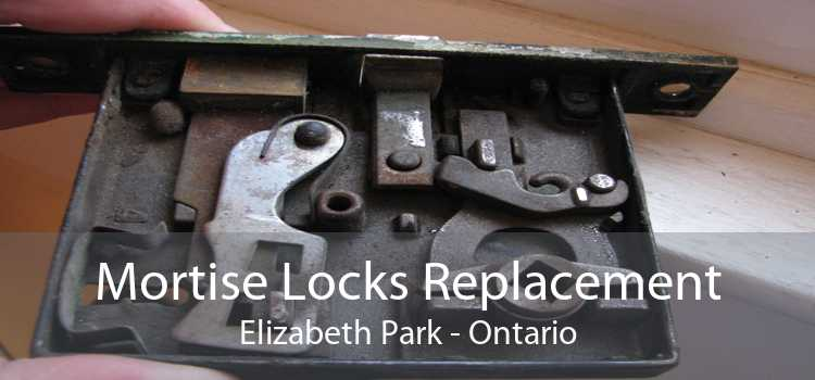 Mortise Locks Replacement Elizabeth Park - Ontario