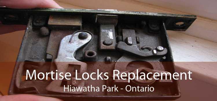 Mortise Locks Replacement Hiawatha Park - Ontario