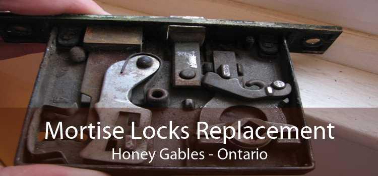 Mortise Locks Replacement Honey Gables - Ontario