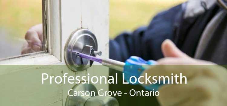 Professional Locksmith Carson Grove - Ontario