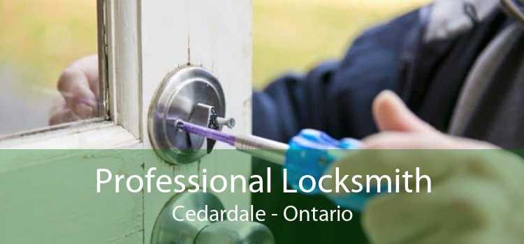 Professional Locksmith Cedardale - Ontario