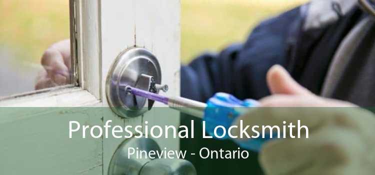 Professional Locksmith Pineview - Ontario