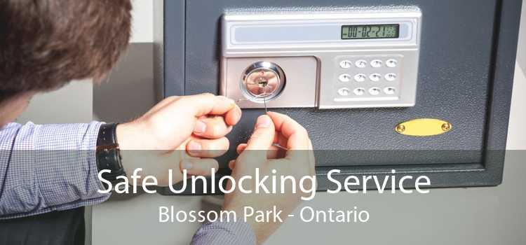 Safe Unlocking Service Blossom Park - Ontario