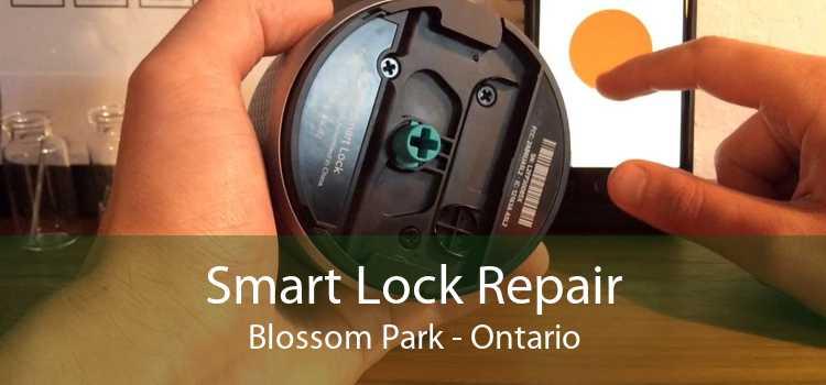 Smart Lock Repair Blossom Park - Ontario