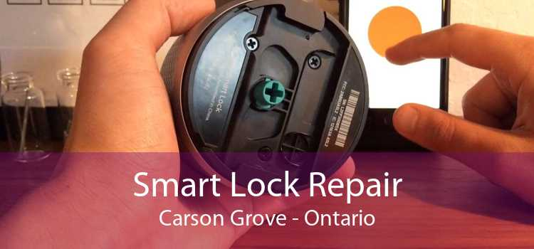 Smart Lock Repair Carson Grove - Ontario