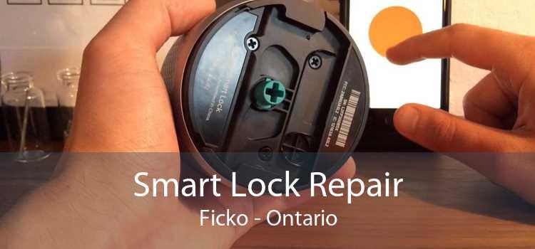 Smart Lock Repair Ficko - Ontario