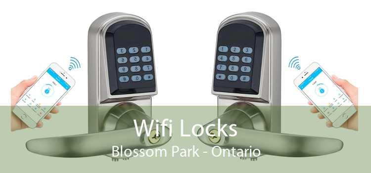 Wifi Locks Blossom Park - Ontario